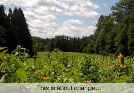 krantz-wellness-change